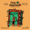 A Case of Amapiano with Dj Protege – Protege Effect Vol 36